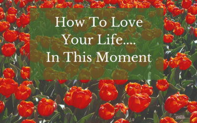 How To Love Your Life……In This Moment.