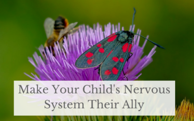 Make Your Child's Nervous System Their Ally